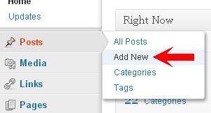 Posting to Your Blog – WordPress Basic Training