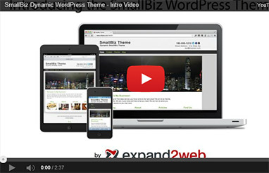 Small Business WordPress Theme from Expand2Web