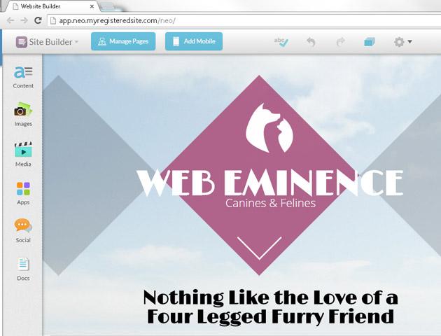 Web.com interface