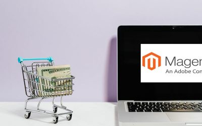 What Is Magento and Why You Should Use It for Website Development?