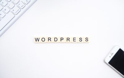 10 Point Checklist for A Successful WordPress Website Launch